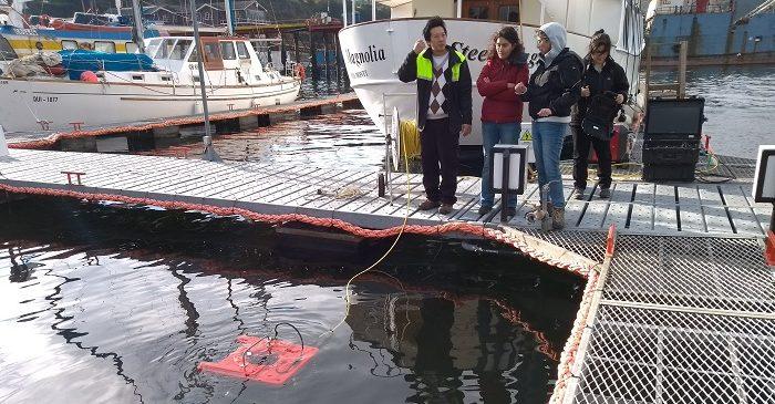 Investigadoras del CIEP reciben capacitación en el uso y mantención de ROV